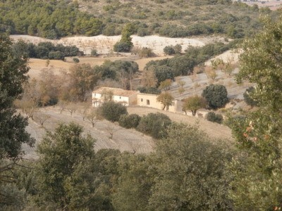 Looking at the cortijo from the land