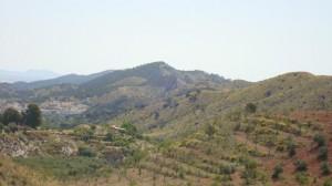 Land, MKTFSF10