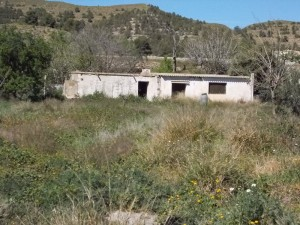 Rural Property, FSF01