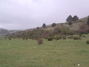 land for sale in spain