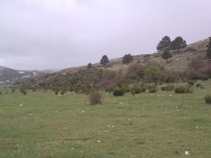 Finca, Sierra de la Sagra, AAC001